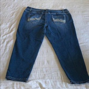 Lane Bryant Distressed Embroidered Ankle Jeans 18